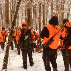 Pour assurer votre Responsabilité Civile Groupement de Chasse / Organisateur de chasses et de battues